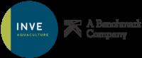 INVE - Benchmark Logo